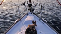 A crucial guide on getting the best boating accessories